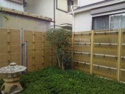 埼玉県富士見市の植木屋。株式会社ドリームガーデン キンモクセイの剪定 透かし剪定 作業後