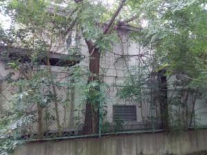 東松山市伐採、庭木剪定、植木屋、造園業、お庭のお手入れ