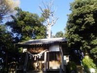 埼玉県 植木屋 坂戸市