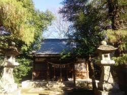 埼玉県 植木屋 鶴ヶ島市
